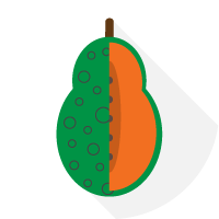 Ringspot Papaya Virus
